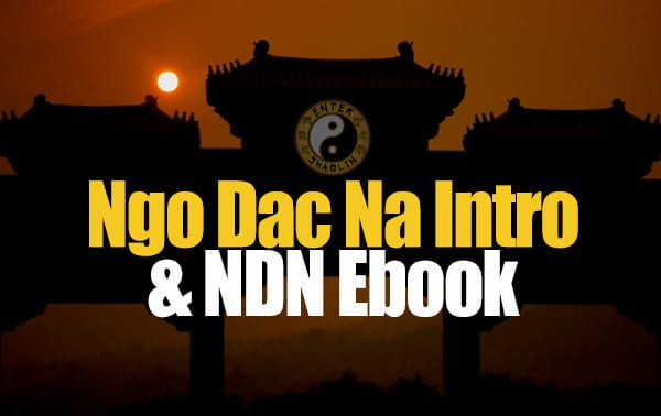 Enter Shaolin Intro and Ngo Dac Na Fundamentals Ebook