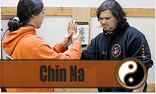 Enter Shaolin Beginner Lessons Chin Na