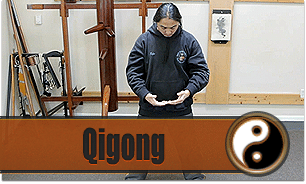 Enter Shaolin Beginner Lessons Qigong