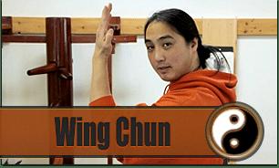 Enter Shaolin Beginner Lessons Wing Chun