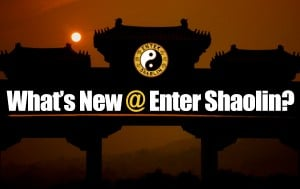 What's New @ Enter Shaolin?