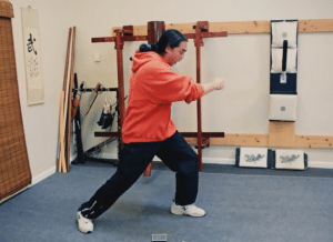 Kung Fu Lessons Online