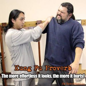 Kung Fu Lessons Online Training