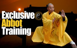 Exclusive Abbot Training – What You Can Do To Help Your Partner Increase In Chi Sao