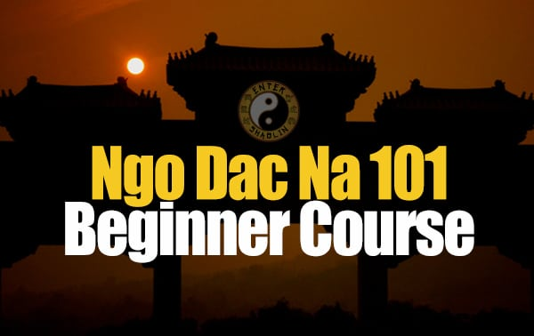 enter-shaolin-ngo-dac-na-101-beginner-course