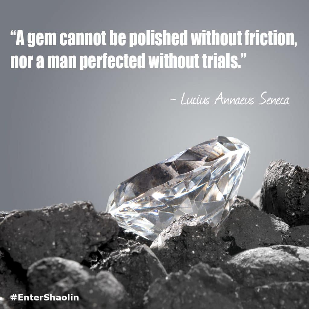 """A gem cannot be polished without friction, nor a man perfected without trials."" - Lucius Annaeus Seneca"