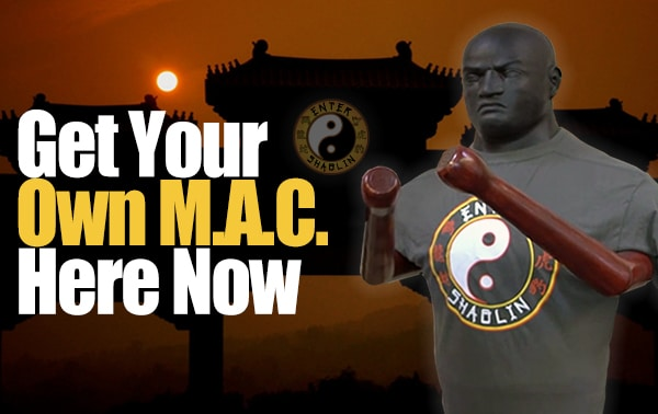 Enter Shaolin | Get your Martial Art Companion here.