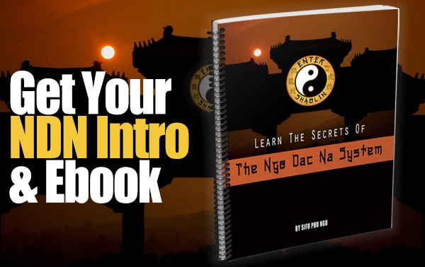 Enter Shaolin | Get Your Ngo Dac Na Intro videos and eBook here.