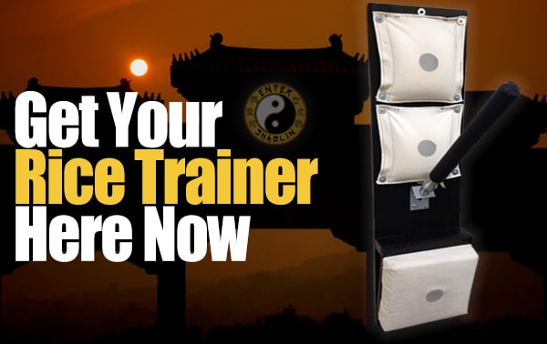 Enter Shaolin | Get your Wing Chun rice trainer here.