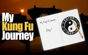 My Kung Fu Journey