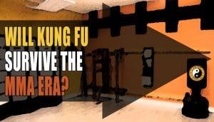 Kung fu Vs MMA