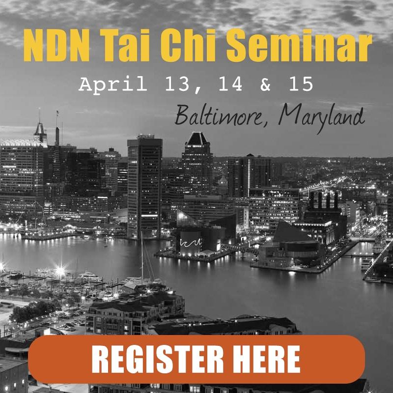 Ngo Dac Na Tai Chi Seminar