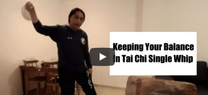 Tai Chi | Single Whip | Yang