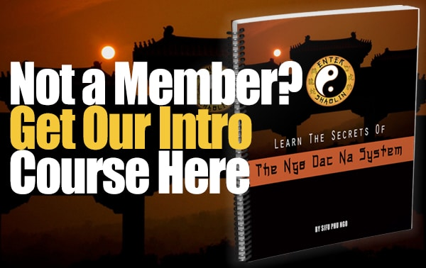 Not a member to Enter Shaolin yet? Curious about the Ngo Dac Na system?