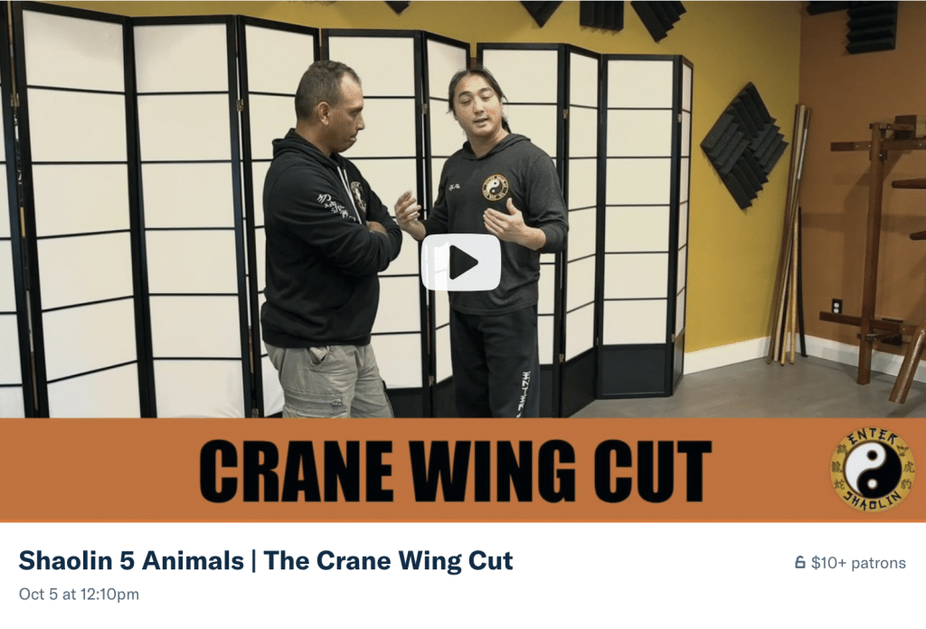 Shaolin 5 Animals | The Crane Wing Cut