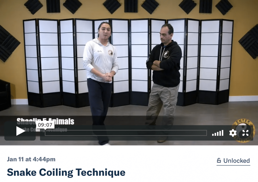 New Patreon Video Enter Shaolin Snake Coiling Technique