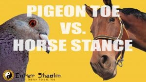 pigeon Toed stance vs Horse Stance