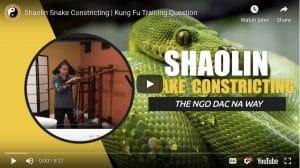Shaolin 5 Animals (Snake Style)