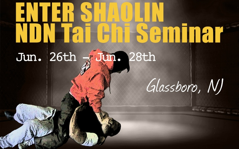 enter-shaolin-NDN-grappling
