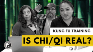 Is Qi Real?