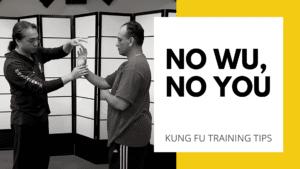 Wu Sau | Wu Sao | Wing Chun